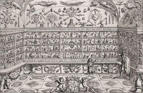 cabinet cospraumsep